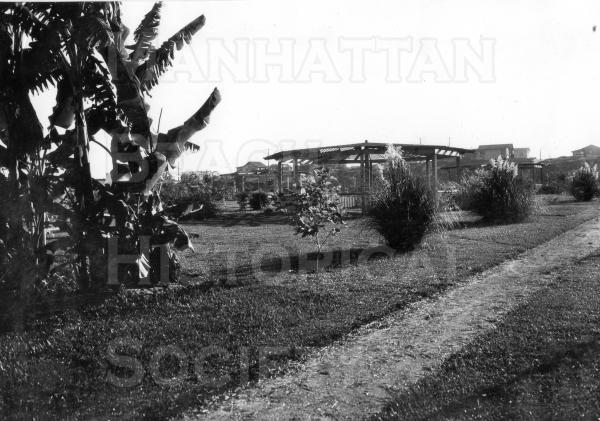 Live Oak Park looking west toward sand dunes, with banana trees and gazebos. The park was constructed by the Works Projects Administration (WPA) during the Great Depression.  The banana trees were a gift from the city of Inglewood.